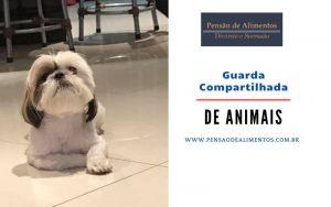 Guarda Compartilhada de Pets