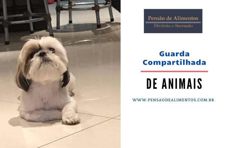 Guarda Compartilhada de Pets